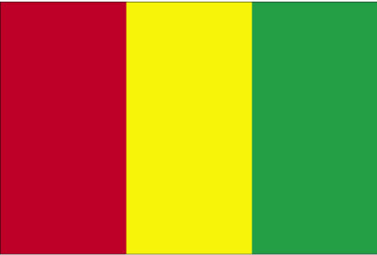 guinea flag date of adoption guinea flag description and image