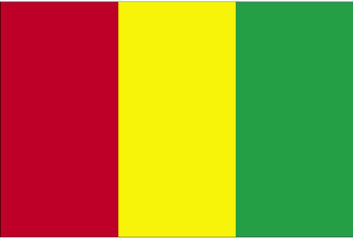 guinea flag date of adoption guinea flag description and image